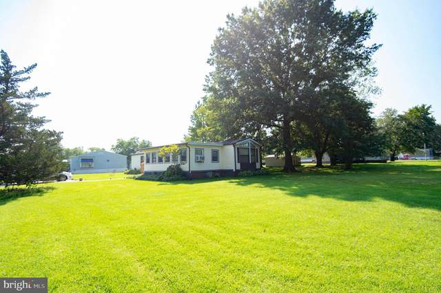 3601 Karen Circle, LINKWOOD, MD 21835 (#MDDO2000512) :: McClain-Williamson Realty, LLC.