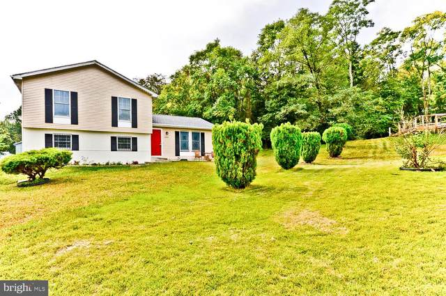 8203 Selkirk Court, DISTRICT HEIGHTS, MD 20747 (#MDPG2014498) :: The Gus Anthony Team
