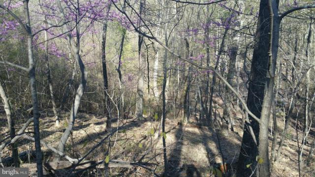 Maverick Trail, HEDGESVILLE, WV 25427 (#1000168137) :: Remax Preferred | Scott Kompa Group