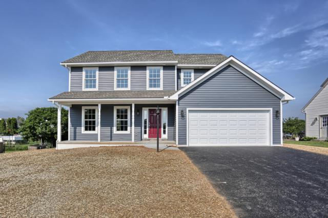 485 Pleasant View Road, HUMMELSTOWN, PA 17036 (#1001664747) :: Liz Hamberger Real Estate Team of KW Keystone Realty