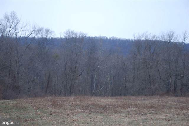 Lot 12 Airyview Road, SHERMANS DALE, PA 17090 (#1002664369) :: TeamPete Realty Services, Inc
