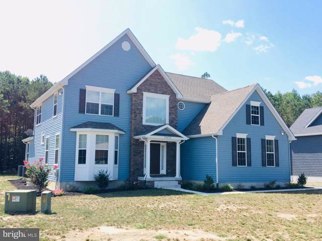 24638 Hollytree Circle, GEORGETOWN, DE 19947 (#1001565036) :: RE/MAX Main Line