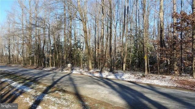 18.3 Ac Staytonville Road, HARRINGTON, DE 19952 (#1001565896) :: RE/MAX Coast and Country