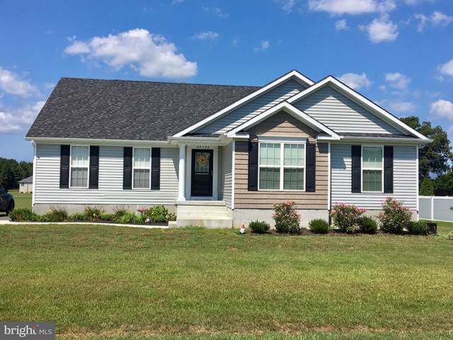 1 Harmony Woods Drive, MILLSBORO, DE 19966 (#1001566534) :: John Smith Real Estate Group