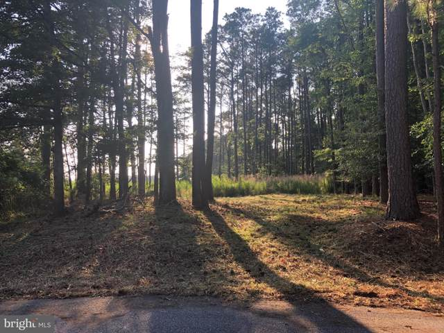 Lot 28 W Manor Court, DAGSBORO, DE 19939 (#1001566644) :: Revol Real Estate