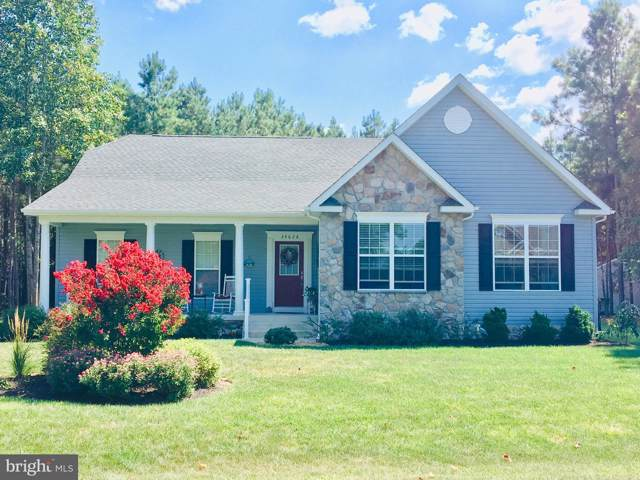 25151 Harmony Woods Drive, MILLSBORO, DE 19966 (#1001566880) :: Linda Dale Real Estate Experts