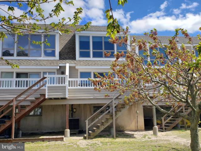 53 Cape Henlopen Drive #16, LEWES, DE 19958 (#1001569830) :: Atlantic Shores Realty