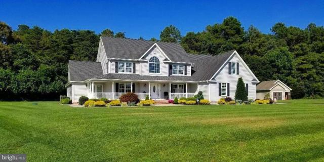 16578 Retreat Circle, MILFORD, DE 19963 (#1001570506) :: RE/MAX Coast and Country