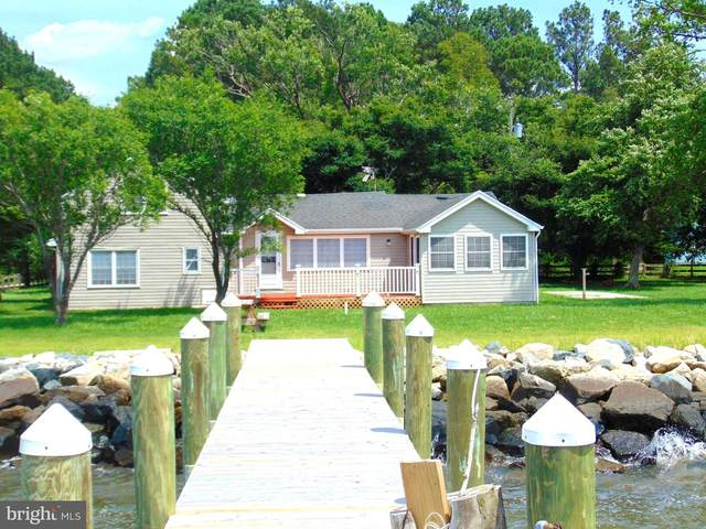 23165 Rolfe Lane, DEAL ISLAND, MD 21821 (#1001960460) :: The Redux Group