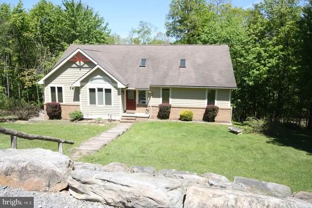 365 Pinnacle Road, SWANTON, MD 21561 (#1002243484) :: Jennifer Mack Properties