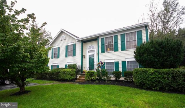 1310 Kingsbury Road, OWINGS MILLS, MD 21117 (#1007410808) :: Colgan Real Estate