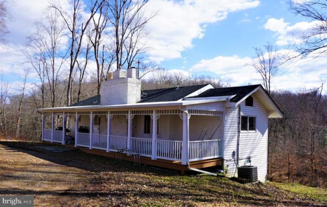 20045 Fields Mill, ELKWOOD, VA 22718 (#1007536058) :: Colgan Real Estate