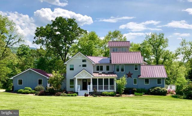 247 Riverbend Drive, WOODSTOCK, VA 22664 (#1009933876) :: Cristina Dougherty & Associates