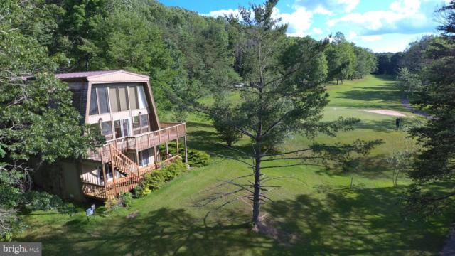 1667 Fairway Drive, BASYE, VA 22810 (#1009958748) :: Arlington Realty, Inc.