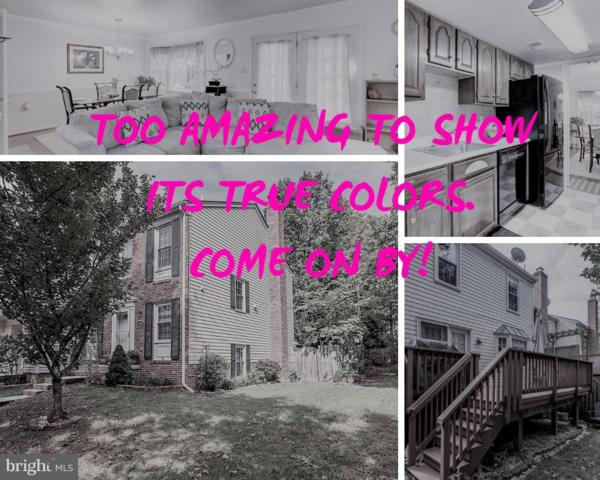 3814 Ogilvie Court, WOODBRIDGE, VA 22192 (#VAPW100100) :: RE/MAX Cornerstone Realty
