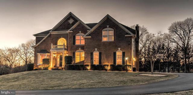 14123 Patterson Farm Court SW, GLENELG, MD 21737 (#MDHW230058) :: The Bob & Ronna Group