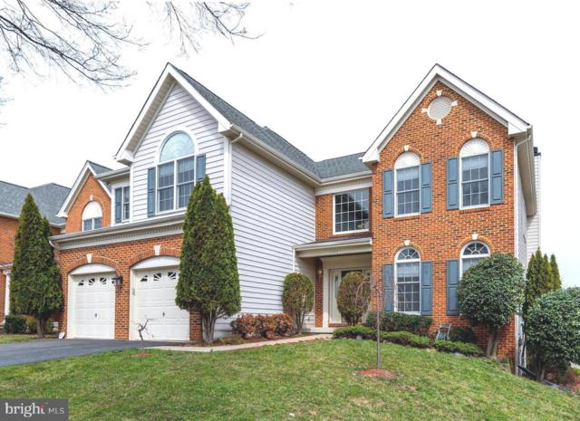 25834 Donegal Drive, CHANTILLY, VA 20152 (#VALO355894) :: Stello Homes
