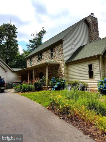 710 Cheyennes Trail, GERRARDSTOWN, WV 25420 (#WVBE166776) :: The Daniel Register Group
