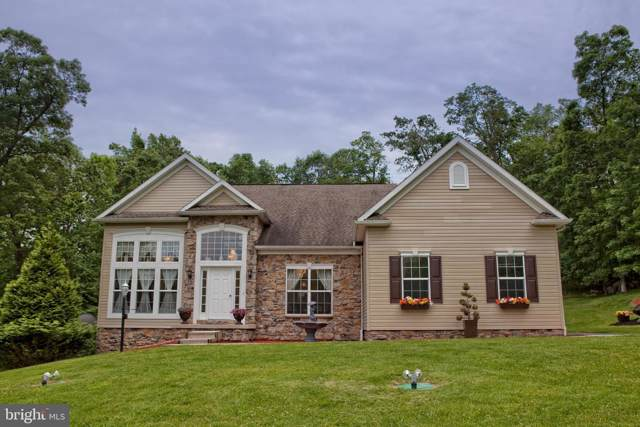 12906 Tower Road, THURMONT, MD 21788 (#MDFR246962) :: AJ Team Realty