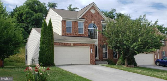 650 Beehive Way, WINCHESTER, VA 22601 (#VAWI112624) :: Radiant Home Group