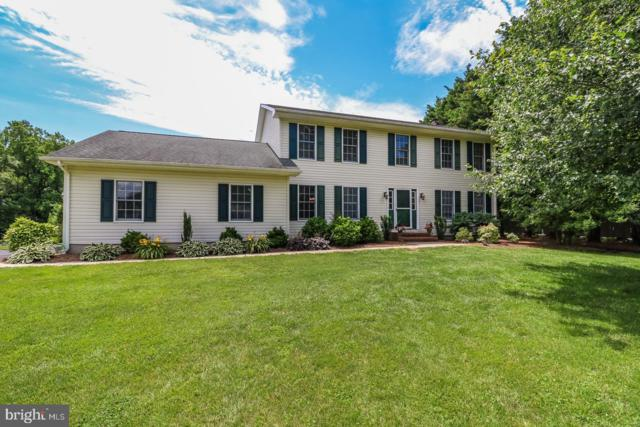 406 Meadow Lane, MIDDLETOWN, DE 19709 (#DENC480496) :: Brandon Brittingham's Team