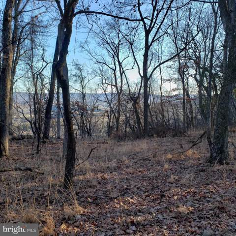 Lots J&K Mayflower Drive, CAPON BRIDGE, WV 26711 (#WVHS113150) :: Colgan Real Estate