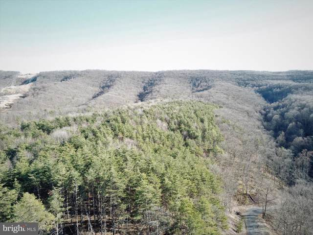 Lot 285 - Ridge View Road, MOOREFIELD, WV 26836 (#WVHD105486) :: AJ Team Realty