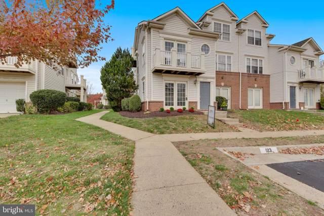 20423 Alderleaf Terrace, ASHBURN, VA 20147 (#VALO397536) :: Revol Real Estate