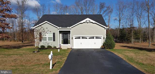 21233 Treeview Lane, MILLSBORO, DE 19966 (#DESU152592) :: Atlantic Shores Realty