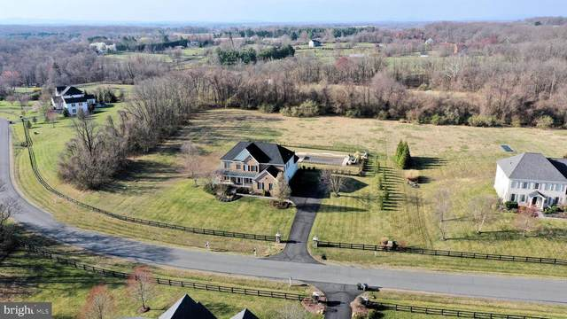 36335 Silcott Meadow Place, PURCELLVILLE, VA 20132 (#VALO402502) :: LoCoMusings