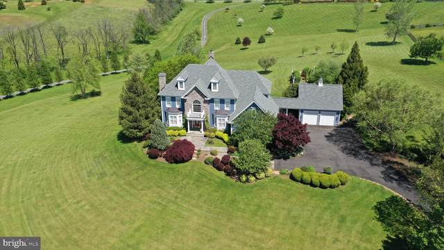 16080 Gold Cup Lane, PAEONIAN SPRINGS, VA 20129 (#VALO404088) :: Great Falls Great Homes