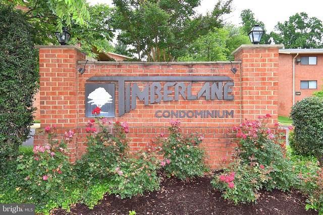 7360 Lee Highway #201, FALLS CHURCH, VA 22046 (#VAFX1128702) :: Gail Nyman Group