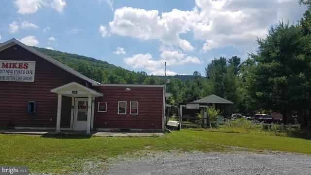 5584 Thorne Bottom Road, LOST CITY, WV 26810 (#WVHD105984) :: AJ Team Realty
