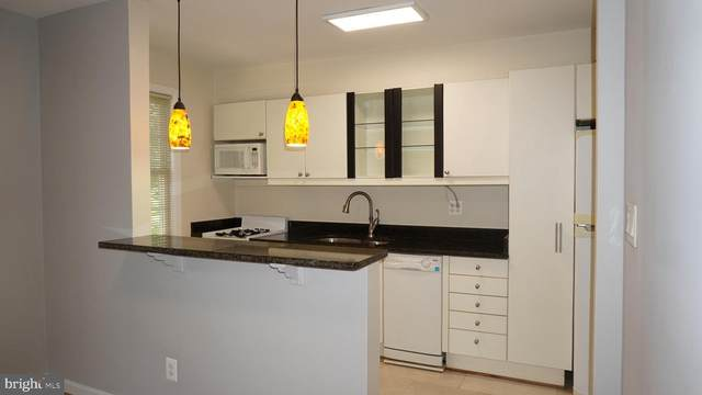 2208 Colston Drive C-202, SILVER SPRING, MD 20910 (#MDMC712676) :: Jim Bass Group of Real Estate Teams, LLC