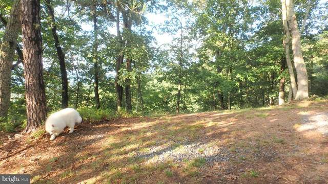 LOT 342 Nathaniel Mountain Drive, MOOREFIELD, WV 26836 (#WVHD106308) :: ROSS | RESIDENTIAL