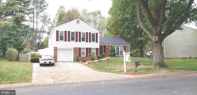 2305 Countryside Drive, SILVER SPRING, MD 20905 (#MDMC726464) :: SP Home Team