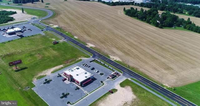 50 acres NE Silicato Parkway, MILFORD, DE 19963 (MLS #DEKT244752) :: Kiliszek Real Estate Experts