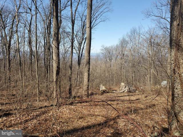 Lot 218 Blue Mountain, FRONT ROYAL, VA 22630 (#VAWR142208) :: ExecuHome Realty
