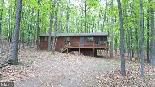 56 Susquehanna Trail, HEDGESVILLE, WV 25427 (#WVBE186624) :: AJ Team Realty