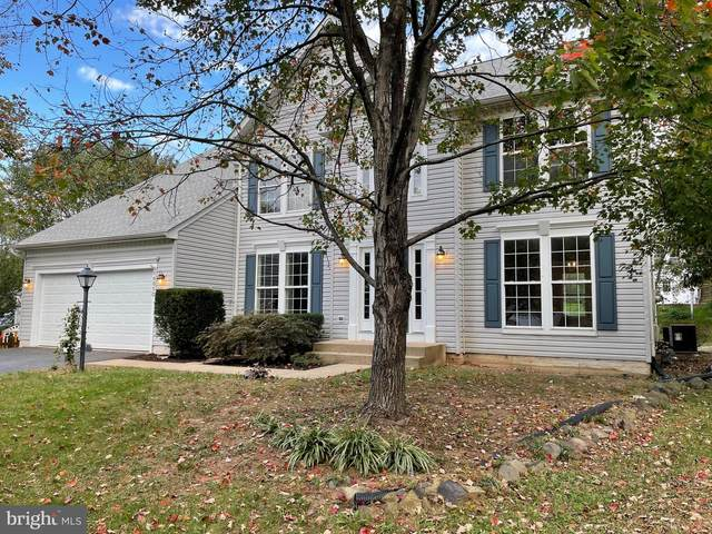 10053 Spindle Foot Court, BRISTOW, VA 20136 (#VAPW2000353) :: AJ Team Realty