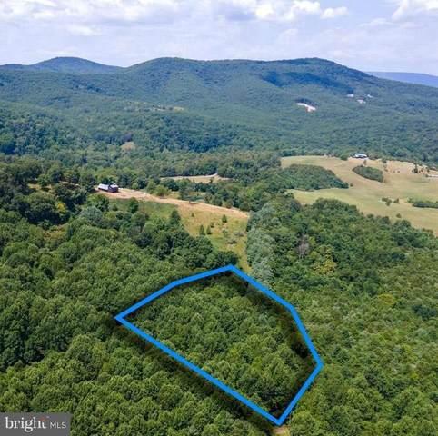 Harmony Lane, STANLEY, VA 22851 (#VAPA2000218) :: Debbie Dogrul Associates - Long and Foster Real Estate