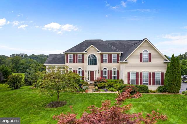 36434 Dwyer Court, ROUND HILL, VA 20141 (#VALO2009446) :: Peter Knapp Realty Group