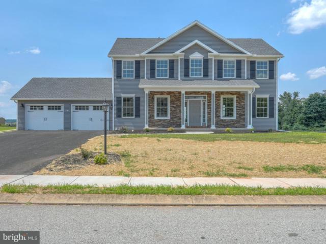 41 Irish Drive, NEW OXFORD, PA 17350 (#1000093776) :: Colgan Real Estate
