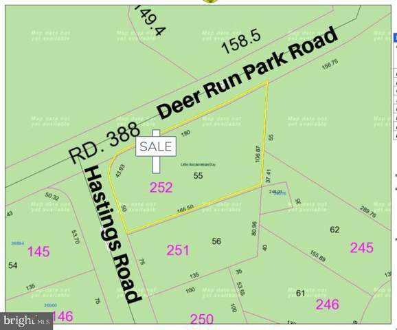 55 Hastings Road #55, SELBYVILLE, DE 19975 (#1001567966) :: Shamrock Realty Group, Inc