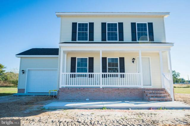 306 Cottonwood Drive, FRUITLAND, MD 21826 (#1001996242) :: The Windrow Group