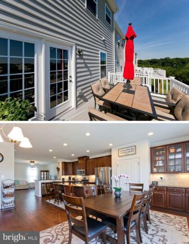 152 Trout Lily Drive, LAKE FREDERICK, VA 22630 (#1002055538) :: Colgan Real Estate