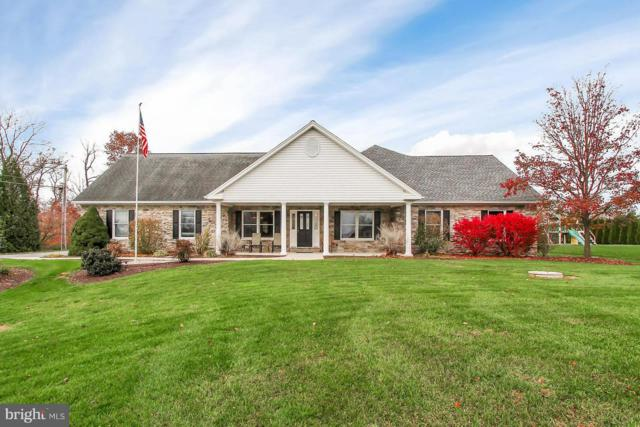 729 Carlson Road, HUMMELSTOWN, PA 17036 (#PADA101096) :: The Heather Neidlinger Team With Berkshire Hathaway HomeServices Homesale Realty