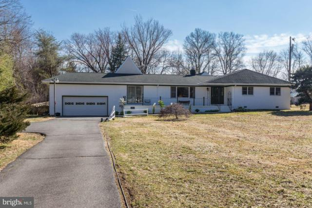 19580 Youngs Cliff Road, STERLING, VA 20165 (#VALO100868) :: Colgan Real Estate