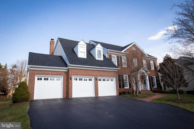 12664 Lace Falls Loop, BRISTOW, VA 20136 (#VAPW323372) :: TVRG Homes