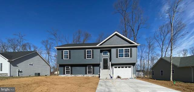 197 Catch Release Court, INWOOD, WV 25428 (#WVBE173898) :: AJ Team Realty